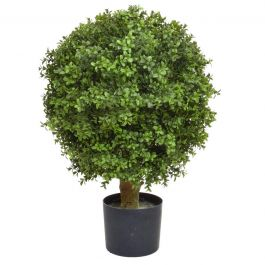 50cm Topiary Boxwood Ball