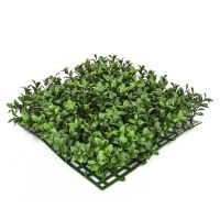 "25 cm x 25 cm Topiary Mat ""Boxwood / Buxus"" - Outdoor"