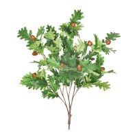 85cm MultiBranch Oak Tree Branch