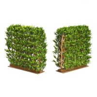 95cm x 35cm x 82cm Natural Trunk Hedge (3096 Leaves)