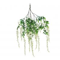 158cm MultiBranch Long Wisteria Branch – Cream