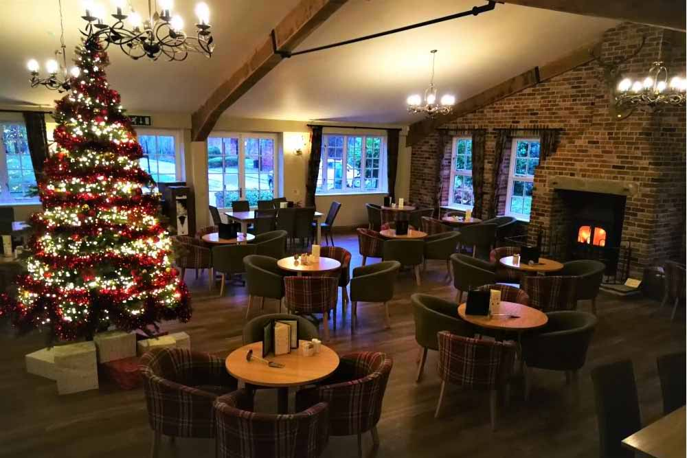 Christmas tree display and adds theme in a cafe