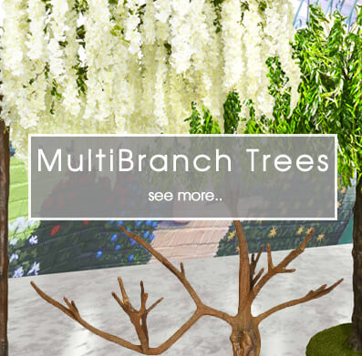 Multi Branch Trees